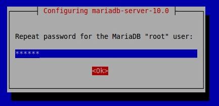 MariaDB root密码
