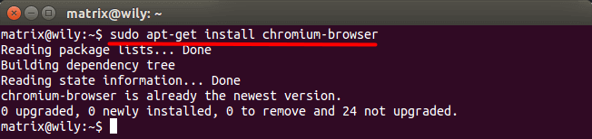 sudo apt-get install chromium-browser