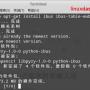 Linux Mint安装ibus五笔和拼音输入法